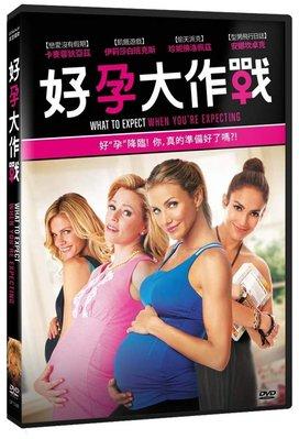 合友唱片 面交 自取 孕大作戰 DVD What to Expect When You're Expecting DVD