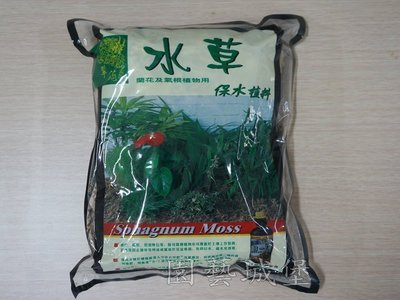 ~【園藝城堡】翠筠水草(3L)  蘭花及氣根植物用