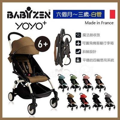 ✿蟲寶寶✿【法國Babyzen】漂亮媽咪人氣款!可上飛機 Yoyo+ 嬰兒手推車 6m+ 白管車架搭8色可選