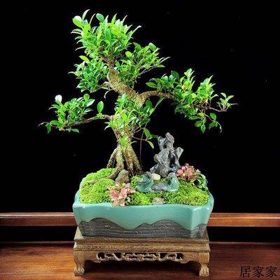 花盆 花器 陶瓷擺飾 陶瓷仿古假山造景花寵桌面小擺件微景觀花盆景栽專用創意小裝飾品
