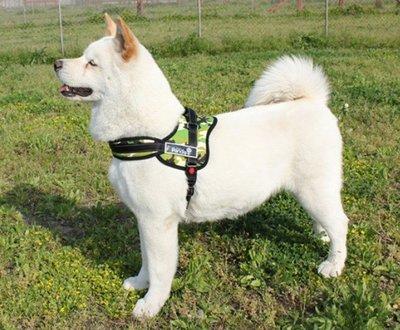 寵物防爆衝胸背帶 馬鞍帶 拉繩 (M號)