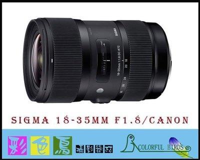 彩色鳥(相機出租 租相機 租鏡頭 鏡頭出租) Sigma 18-35mm f1.8 (for Canon) APS-C 台北市