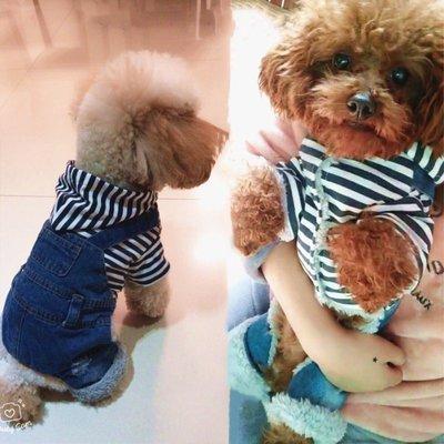 寵物衣服 貓咪狗狗衣服 鞋子 雨衣小狗狗衣服泰迪牛仔四腳衣服秋冬裝比熊博美吉娃娃狗衣服寵物服飾