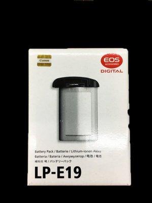 彩色鳥(租 相機 鏡頭 燈光) 租 CANON LP-E19 電池 1DX II 電池 LP E19