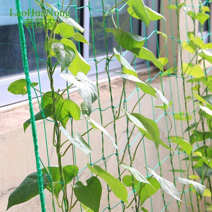 888利是鋪-家用園藝網 黃瓜攀爬植物爬藤網加強版尼龍園藝用品爬藤網#爬藤網