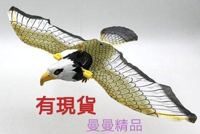 老鷹模型/仿真老鷹/電動老鷹/電動逼真動物玩具/會扇動翅膀/送吊繩
