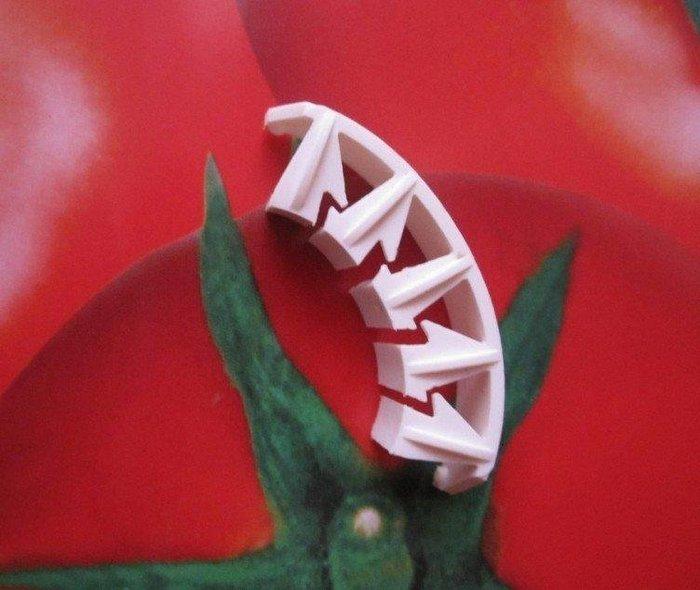[樂農農] 現貨供應中 可回收數年循環使用 番茄果柄保護夾 番茄果柄夾 避免番茄花穗柄彎折