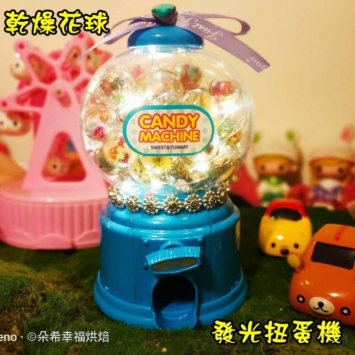 獨家設計 乾燥花球 發光 扭蛋機  35粒款 乾燥花 情人節禮物 閏蜜禮物 發光罐 乾燥花罐 朵希幸福烘焙