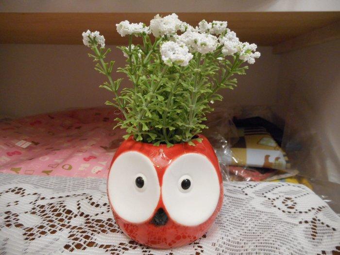 ~~凡爾賽生活精品~~全新可愛紅色貓頭鷹白色小花造型小盆栽擺飾