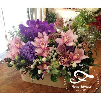 B34。粉紫色系盆花。東亞蘭+繡球。祝賀開幕生日喬遷。婚禮桌花。台北花店。【Flower&House花藝之家】