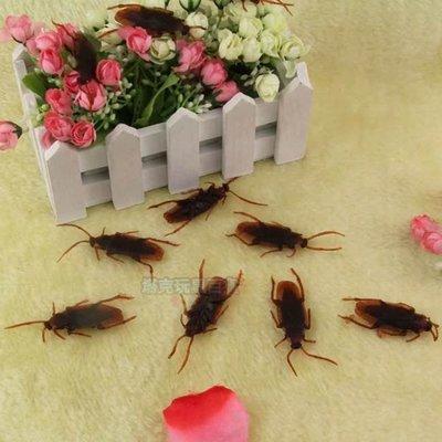 【塔克百貨】整人玩具 整蠱專家 買五送一 蟑螂 小強 假蟑螂 道具 搞怪/惡搞/COS