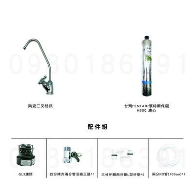台灣濱特代理公司貨 QL3 H300 (H-300)單道式淨水器(保固)※訂購請參考賣家關於我