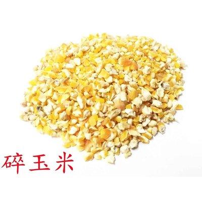 精選進口碎玉米/玉米碎/200克20元/零嘴、主食/適合鸚鵡、鼠類、雞類、蜜袋鼯、倉鼠飼料/