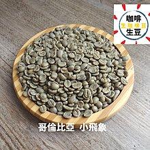 哥倫比亞 小飛象 咖啡生豆 ✨ 1KG 生咖啡豆