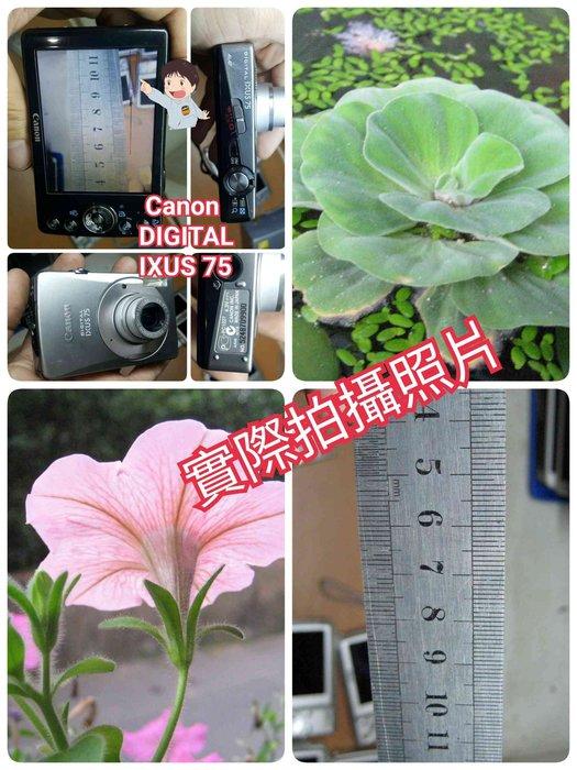 Canon 佳能IXUS65 70 75 80 85 870IS SX230 A4000送電池+全新萬用充+全新記憶卡