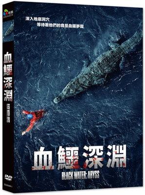 合友唱片 血鱷深淵 Black Water: Abyss DVD