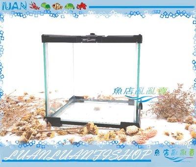【~魚店亂亂賣~】LUANFISHOP兩棲玻璃爬蟲箱MINI寵物缸21x21x20cm全景缸(守宫.獨角仙.蜥蜴.角蛙)