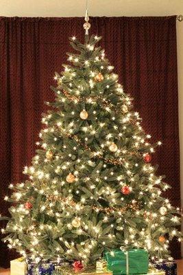 海迪180CM高聖誕樹加密帶燈綠色聖誕樹帶裝飾品擺件聖誕場景布置