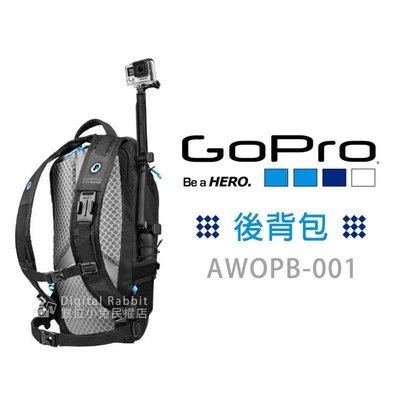夏日銀鹽【GOPRO AWOPB-002 後背包】相機包 收納包 hero 5 6 7 8