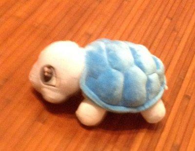 全新藍烏龜