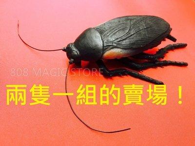 [MAGIC 999] 整人「超級蟑螂」兩隻!超級大隻 效果超好!(兩隻一組的賣場,不要下錯喔!)