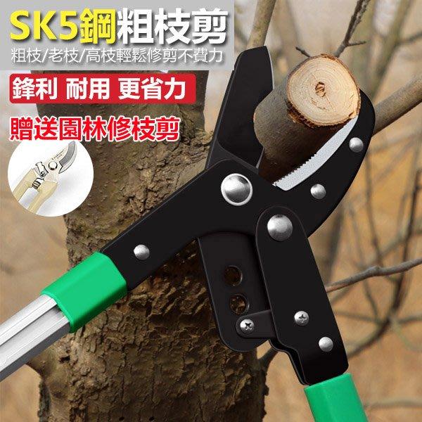 【工欲善其事,必先利其器】鷹嘴齒輪型專業樹剪