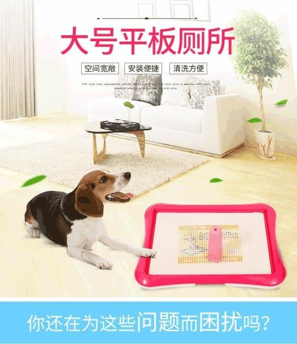 大號狗平板廁所 寵物中大型犬用大便盆 泰迪金毛比特拉布拉多xw