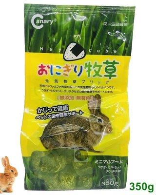 【樂魚寶】Canary 鮮境 苜蓿草 草磚 幼兔 哺乳寵兔 天竺鼠 龍貓 磨牙