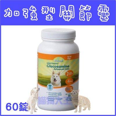 *貓狗大王*美國 8in1-Excel加強型關節靈(天然葡萄糖胺)60錠//添加MSM保護關節軟骨~高齡犬老犬必備