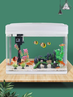 懶人免換水生態魚缸水族箱金魚缸小型客廳家用中型桌面創意長方形