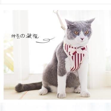 貓咪專用牽引繩背心式溜貓遛貓繩貓錬貓繩子貓牽引防掙脫神器用品簡尚軒