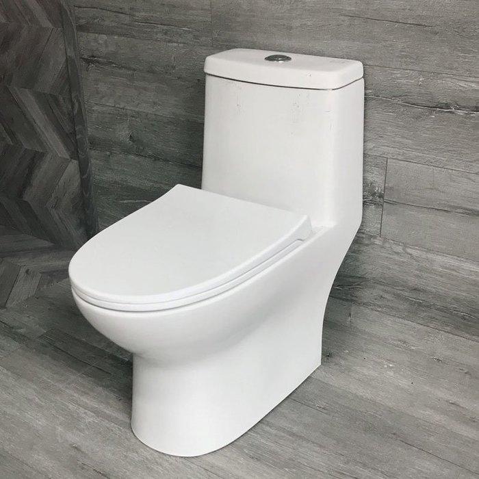 《101衛浴精品》ROMAX 水龍捲單體馬桶 R8022 同TOTO龍捲式洗淨【全台免運費 可貨到付款】