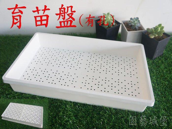 【園藝城堡】育苗盤(有孔) 白色 育苗箱 栽培盤