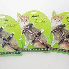 *寵愛有家* 貓咪專用 貓咪牽引繩/貓咪胸背帶/工字型胸背帶牽引帶