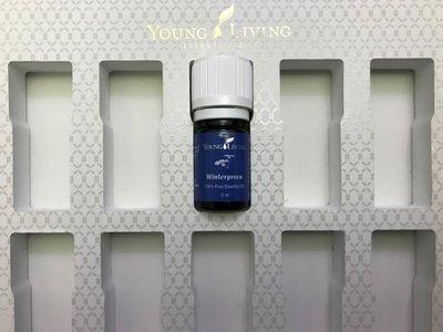 東青精油 Wintergreen 5ml - YOUNG LIVING essential oil