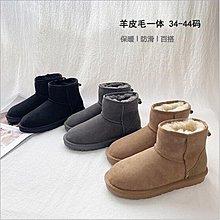 【低價下殺】情侶款雪地靴 羊皮毛一體雪地靴 女短筒冬季保暖雪地鞋 休閒加厚羊毛棉靴#21217