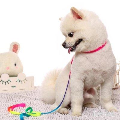 寵物用品狗狗牽引繩泰迪七彩幼狗小型犬背心式遛狗繩栓鍊子