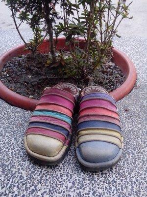 瑤瑤小舖@【麥肯納(Macanna)】全真皮拖鞋/尺寸37,超好穿(24號可穿~)