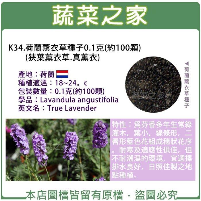 【蔬菜之家】K34.荷蘭薰衣草種子0.1克(約100顆)(狹葉薰衣草.真薰衣)(芬香多年生常綠灌木,葉小,線條形)