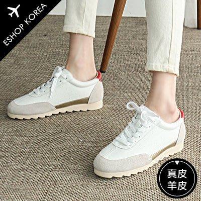 真皮【PALY008】韓國真羊皮配色綁帶運動休閒鞋