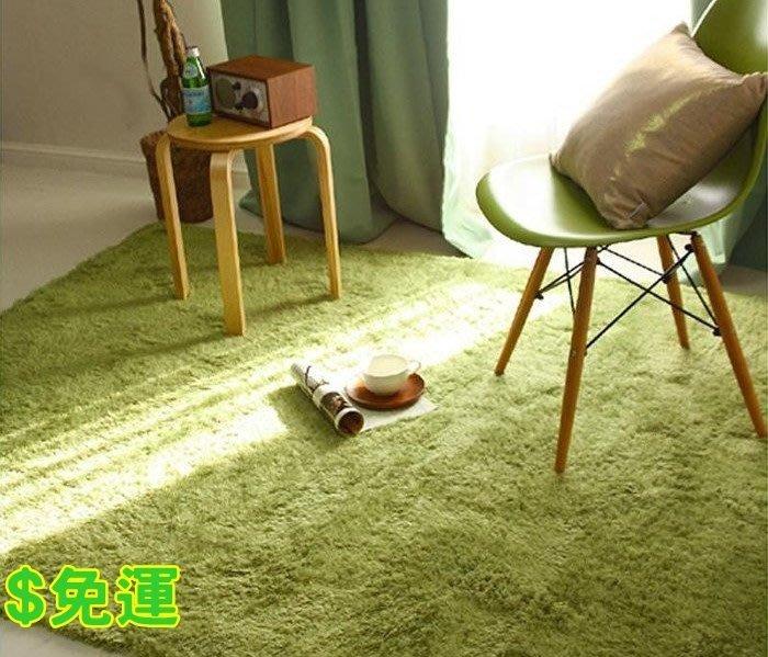 (長毛) 140*200 CM 客廳臥室室內外腳踏墊 地毯 地墊 瑜珈墊 兒童遊戲爬行墊 多色地毯攝影棚布置攝影棚拍 網