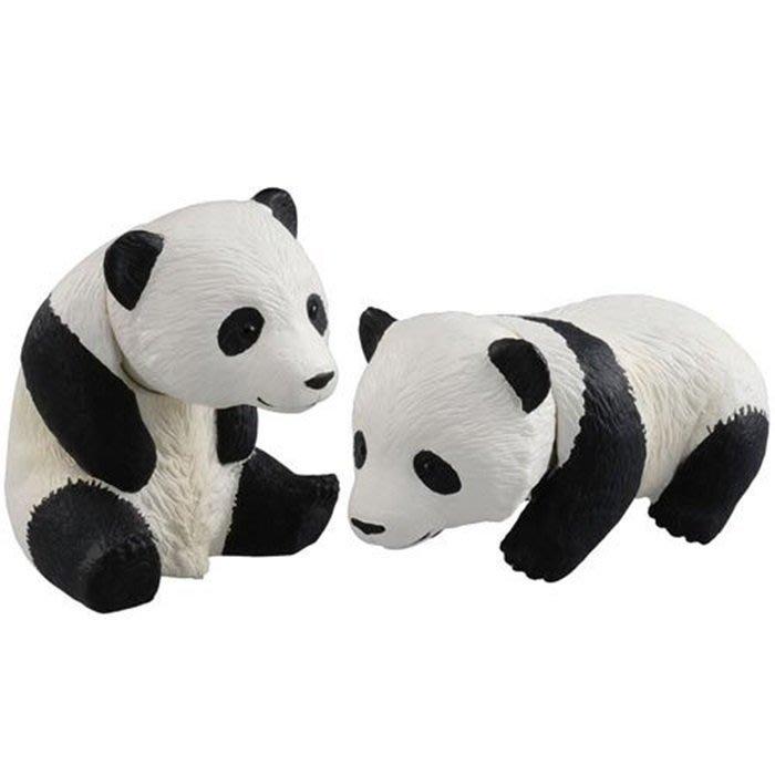 【阿LIN】81125A 23 熊貓 TOMICA 多美動物園 AN81125 AS-23 ST安全玩具