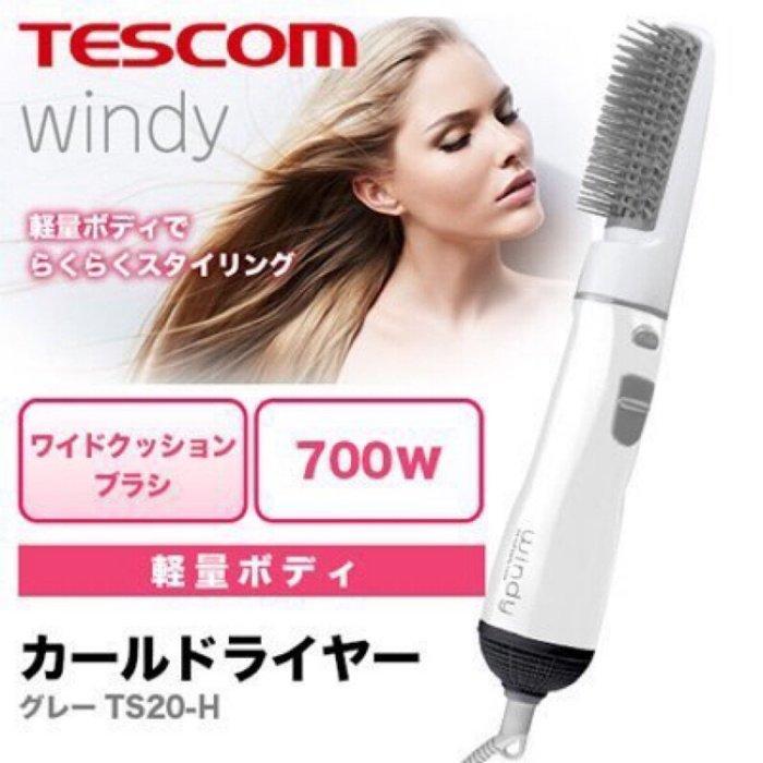 XinmOOn 日本 TESCOM TS20 H 梳子 吹風機 整髮器 整髮梳 冷風 熱風 切換 灰 windy