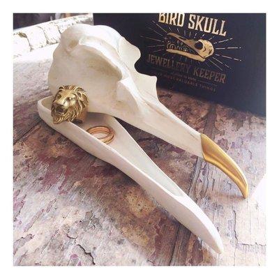 Suck UK 鳥骨骼收納盒 BIRD SKULL 裝飾品 金喙 適合chrome hearts飾品盒 型男必備良品