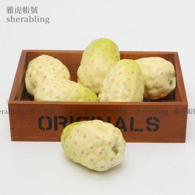 (MOLD-A_229)仿真水果模型假水果櫥柜裝飾品水果蔬菜仿真諾麗果水果店擺設道具