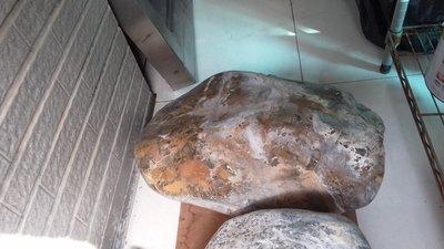 珍品,巨大的金瓜石(太重無法稱,約上百公斤)