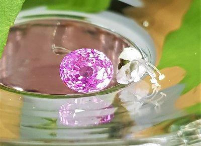 揚邵一品 閃亮亮~(附權威證)2.55克拉錫蘭粉紅藍寶石 天然無燒 亮晶晶 光芒細緻 色彩甜美 斯里蘭卡粉紅剛玉 值得擁有