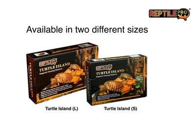 *海葵達人*磁吸固定式烏龜島(L)兩棲爬蟲專用曬台