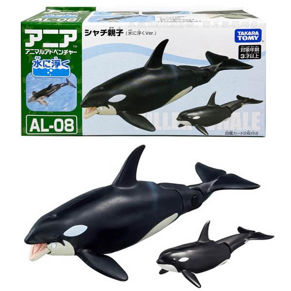 【台灣出貨 3C小苑】AN13763 正版 日本 多美 AL-08 虎鯨 漂浮版 探索動物 多美動物 玩水 動物玩具
