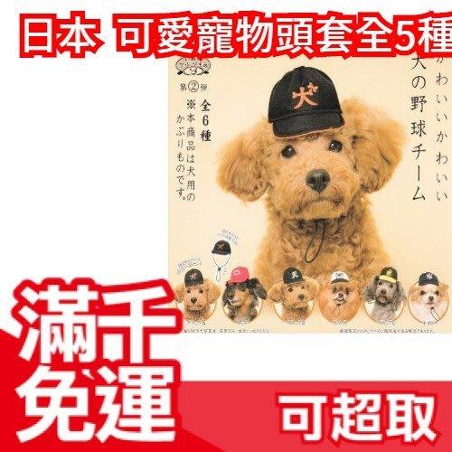 【棒球狗狗】日本原裝 可愛寵物頭套 整套5種 扭蛋轉蛋 汪星人毛小孩貓咪犬兔 娃娃造型裝飾帽療癒❤JP Plus+